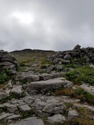 Pathway to Dun Aengus