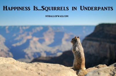 happiness-is-squirrels-in-underpants